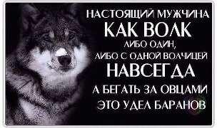 Статус про мужчину волка